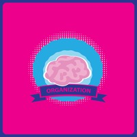 Brain organization label