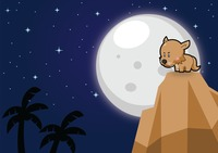 Cat on a mountain over a moonlit background
