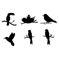Collection of birds silhouette