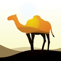 Double exposure camel and desert