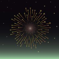 Firework display in the night sky