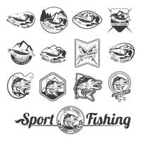 Sport fishing label collection