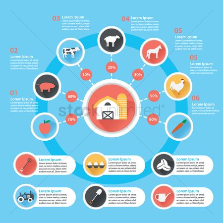 Animal : Agricultural icons infographic