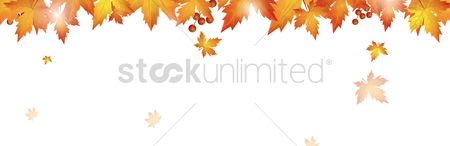 Vectors : Autumn themed banner