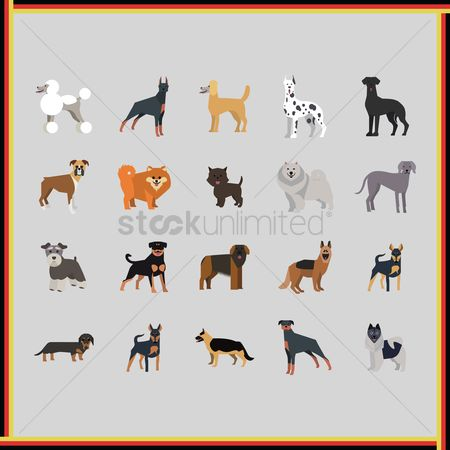 Vectors : Collection of dogs