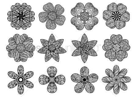 Patterns : Collection of intricate floral designs