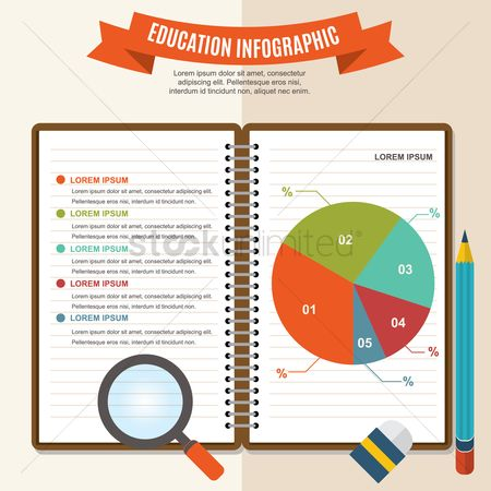 Banners : Education infographic