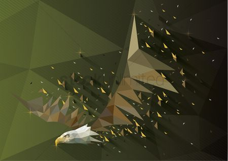 Animals Wildlife : Low poly of eagle