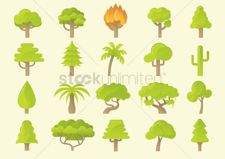 Tree : Various types of trees