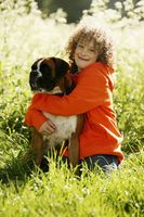 Boy embracing dog
