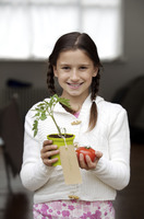 Girl holding tomato and a tomato plant