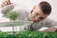 Man covering cake stand with grass inside