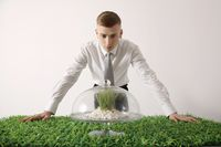 Man looking at grass in glass cake stand