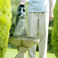 Senior man watering plant