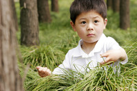 Young boy playing with the bushes