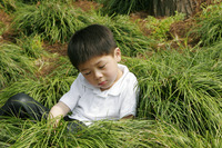 Young boy sleeping on the bush