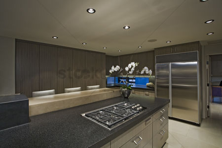 Interior : Modern domestic kitchen