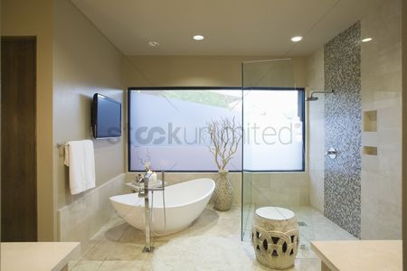 Interior : Palm springs bathroom with freestanding bath