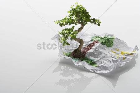 Environment : Tree growing from drawing