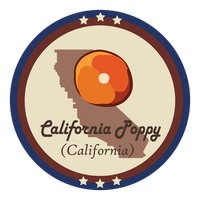 California state with california poppy flower