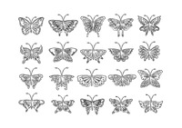 Popular : Collection of butterflies