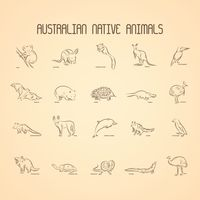 Compilation of australian native animals