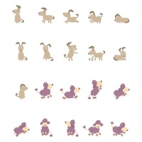 Dog activity collection