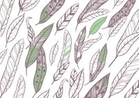 Feather background design