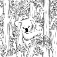 Koala bear on tree design