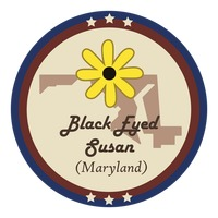 Maryland state with black-eyed susan flower