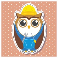 Owl as a repairman