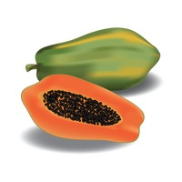 Papaya with slice