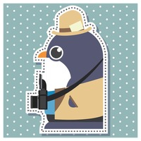 Penguin as a cameraman