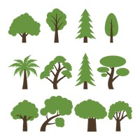 Popular : Set of trees
