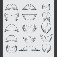 Popular : Set of wings icon