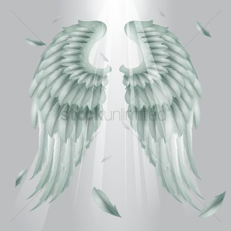 Feather : Angel wings