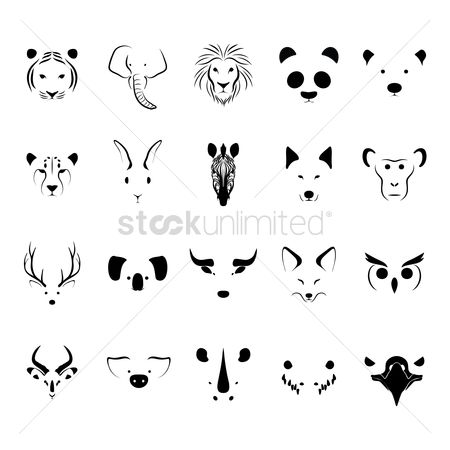 Cow : Animal collection