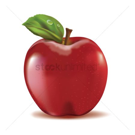 Fruit : Apple