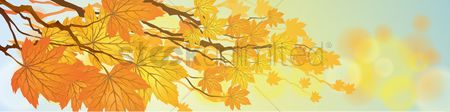 Copyspaces : Autumn themed banner