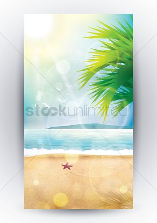 Starfishes : Beach design
