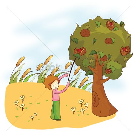 Field of flowers : Boy plucking fruit with stick