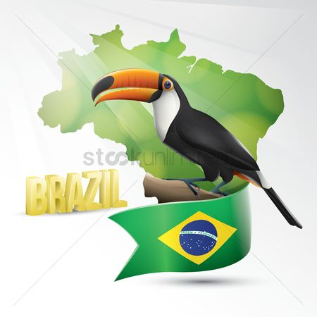 Toco toucan : Brazil wallpaper