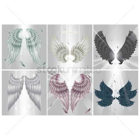 Halo : Collection of angel wings