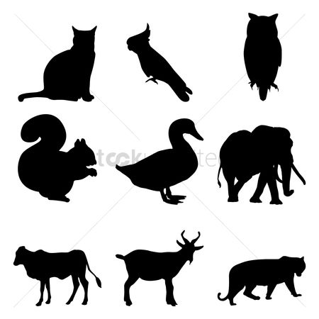 Cow : Collection of animal silhouettes