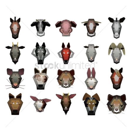 Bull : Collection of animals