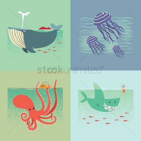 Cartoon : Collection of aquatic animals