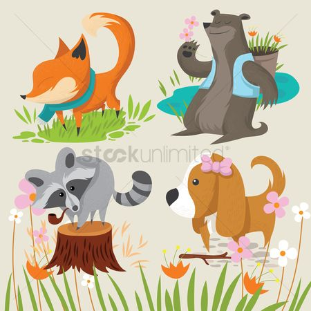 Character : Collection of cute animals