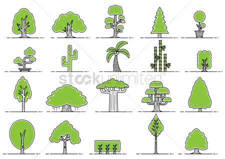 Cactus : Collection of various tree icons