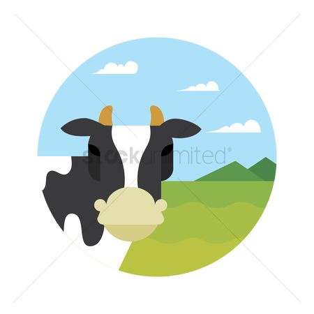 Dairies : Cow