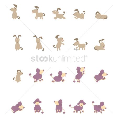 Posing : Dog activity collection